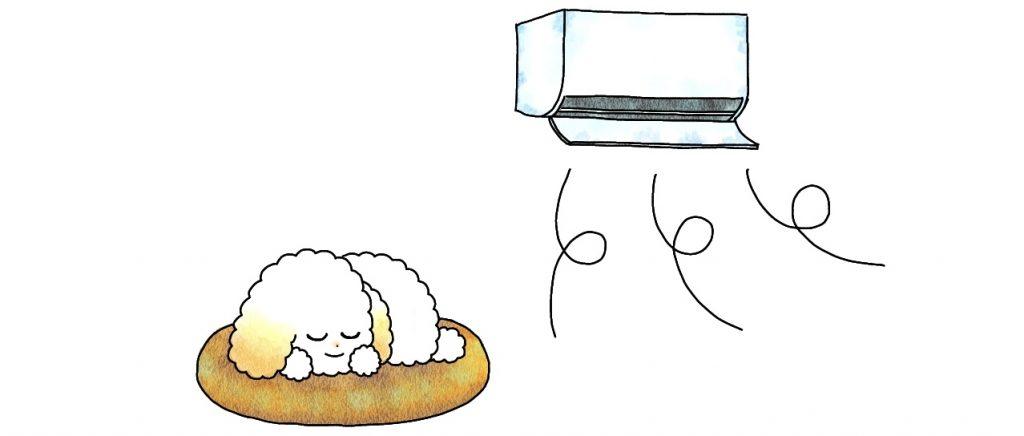 トイプードルの温度調整