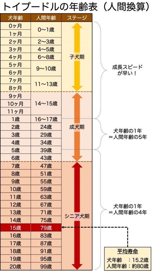 トイプードル 年齢表(人間換算)