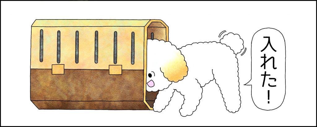【STEP3】クレートに頭を入れられるようにする