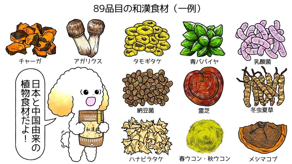 みらいのドッグフードに含まれる和漢食材(一例)