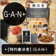 和漢みらいのドッグフード 【特別療法食 栄養回復(G・A・N+)】
